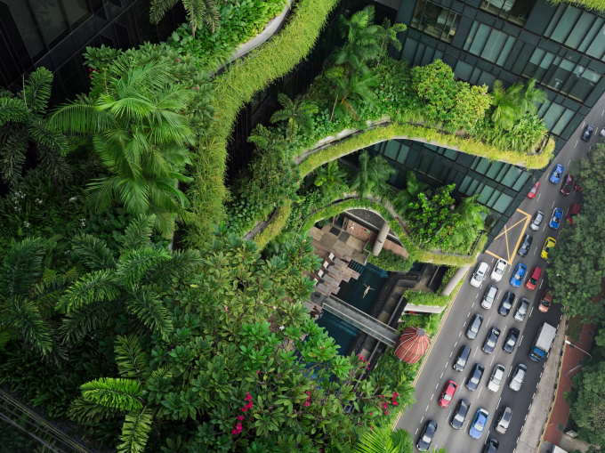 Cao ốc xanh ở Singapore