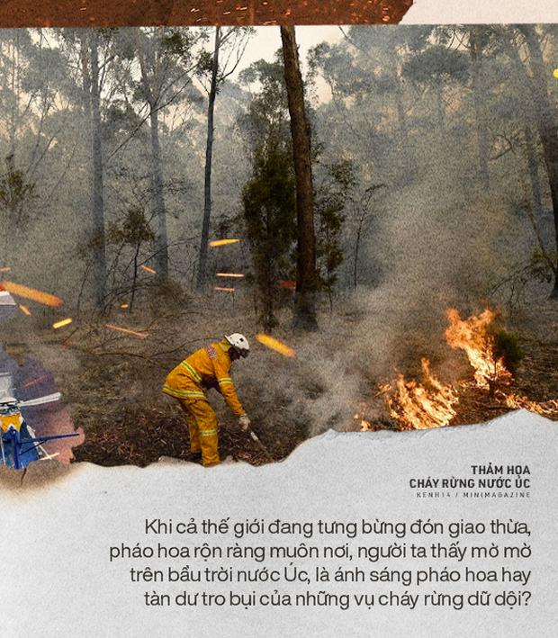 Biến đổi khí hậu có nhấn chìm thập kỷ mới trong chảo lửa?
