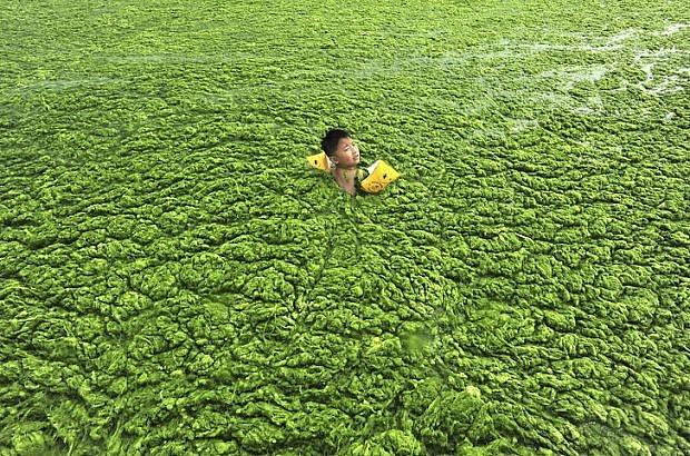 Những bức ảnh về thực trạng ô nhiễm môi trường khiến cả thế giới giật mình
